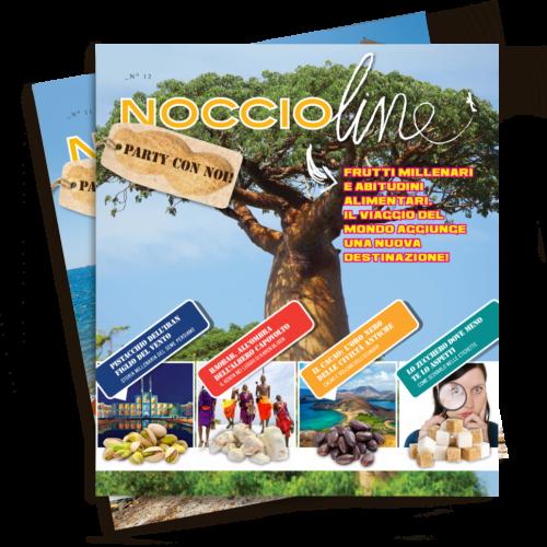 mockup_web_Noccioline